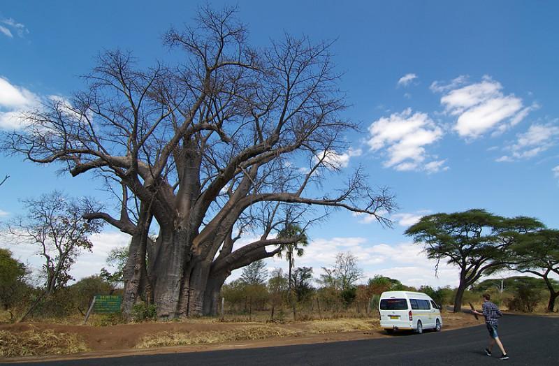 Zimbabwe01