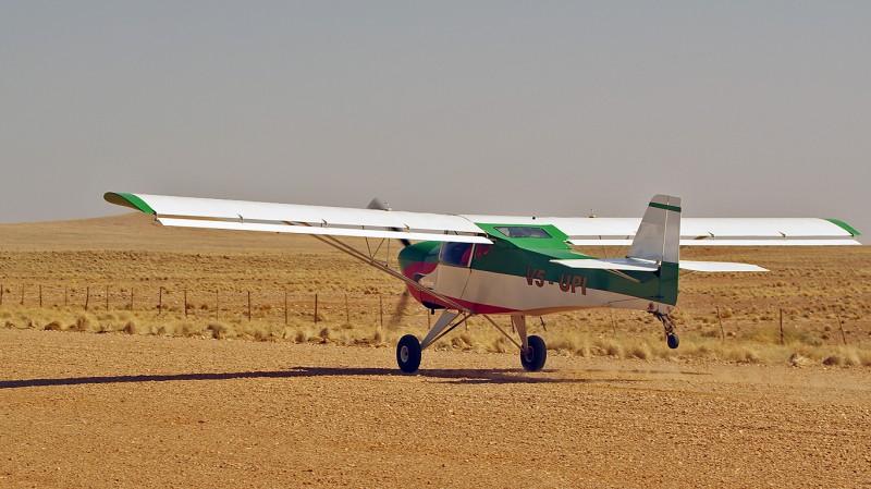 Bushbaby02