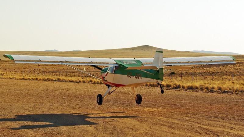 Bushbaby05