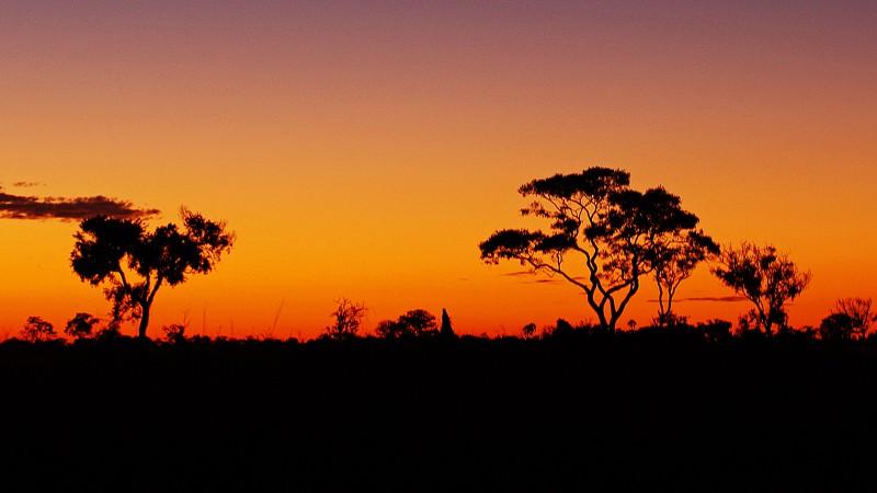 Botswana3b_20