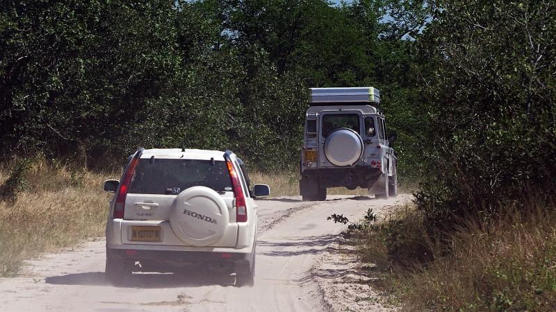 Botswana6_03