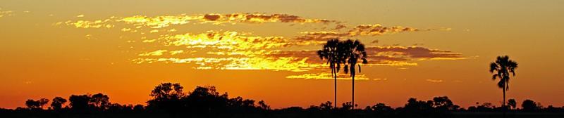 Botswana8-3b.jpg