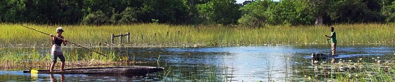 Botswana8-4b.jpg