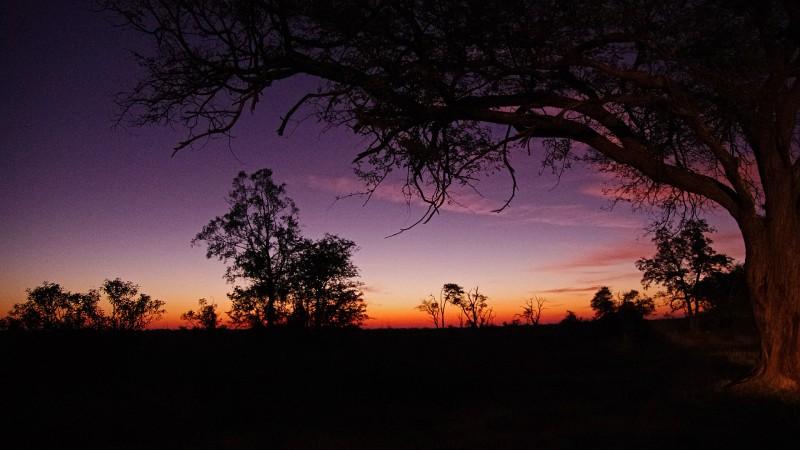 Botswana7a_01