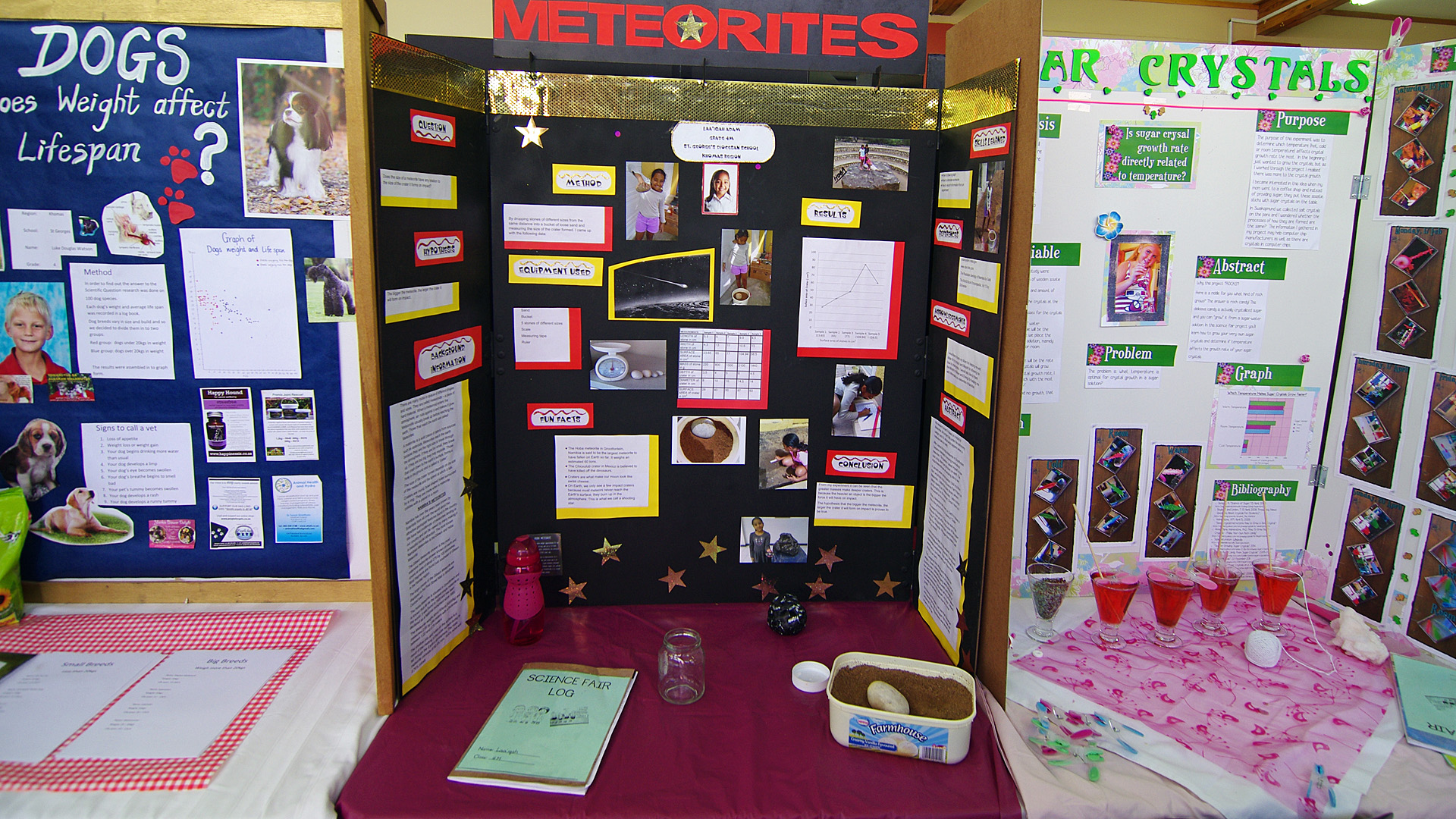st george s science fair grade 4 namibia