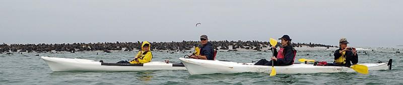 2014_Kayak