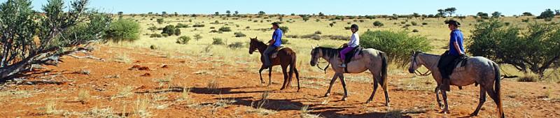 2015_Bagatelle horseback