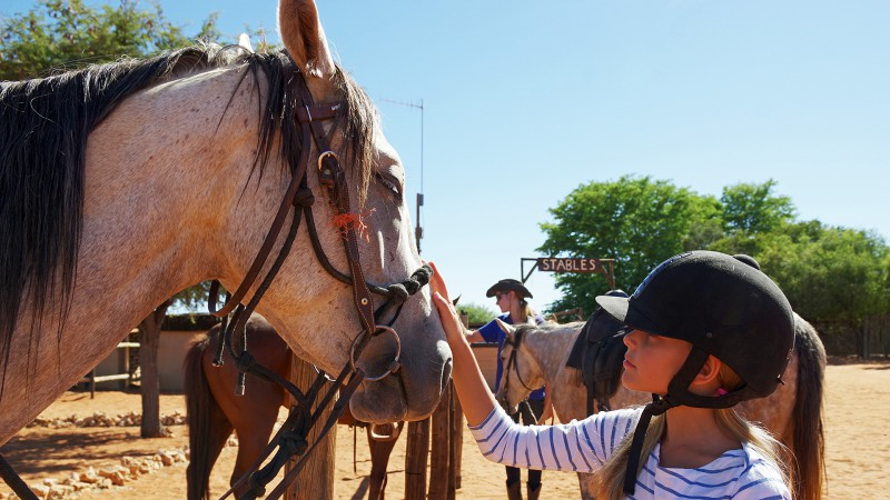 Horseback09